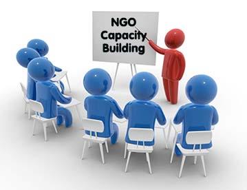 NGO capacity building